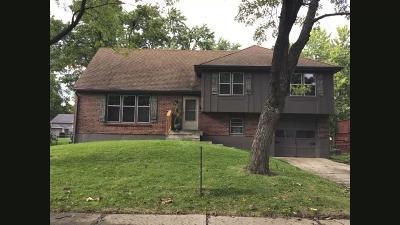 Grandview Single Family Home For Sale: 8204 E 134th Street