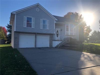 Smithville Single Family Home For Sale: 200 Fletcher Drive