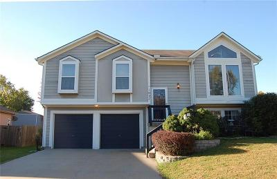 Single Family Home For Sale: 1027 N Logan Street
