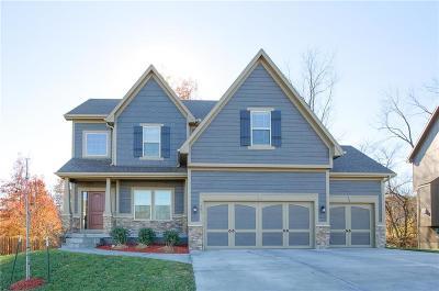 Kearney Single Family Home For Sale: 1201 E 15th Street