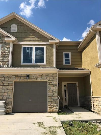 Mission, Overland Park, Shawnee, Shawnee Mission Condo/Townhouse For Sale: 16059 Fontana Street #203