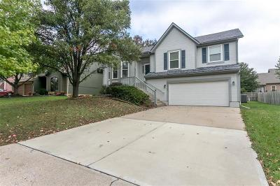 Shawnee Single Family Home For Sale: 22708 W 49th Terrace