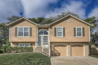 Lee's Summit Single Family Home For Sale: 616 NE Topaz Drive