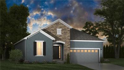 Lenexa Single Family Home For Sale: 8823 Sunray Drive