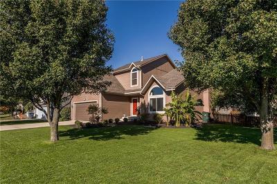 Olathe Single Family Home For Sale: 18702 W 163rd Terrace