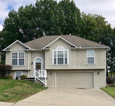 Single Family Home For Sale: 5109 N Washington Street