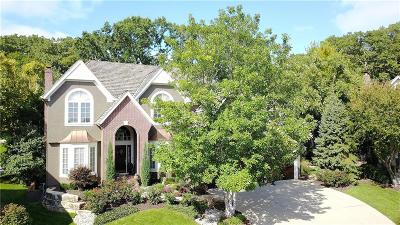 Shawnee Single Family Home For Sale: 7312 Caenen Lake Road