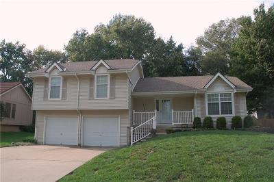 Overland Park Single Family Home For Sale: 15214 Horton Street