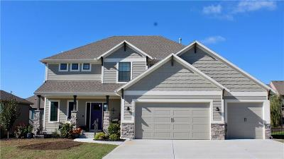 Olathe Single Family Home For Sale: 21652 W 177 Terrace
