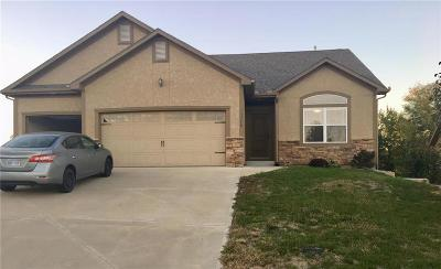 Bonner Springs Single Family Home For Sale: 13778 Valleyview Way