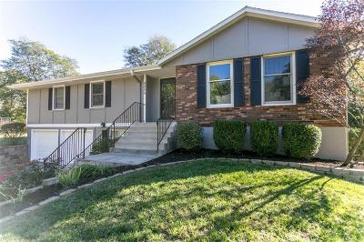 Single Family Home For Sale: 6825 W 166th Terrace