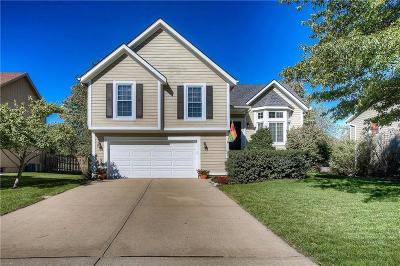 Single Family Home For Sale: 15520 Foster Street