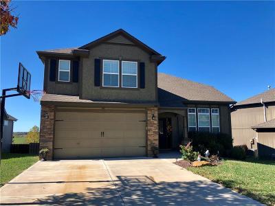 Bonner Springs Single Family Home For Sale: 484 S 138th Street