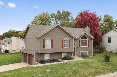 Greenwood Single Family Home For Sale: 1306 Park Drive