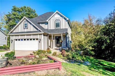 Kansas City Single Family Home For Sale: 8619 N Watson Avenue