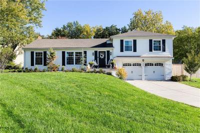 Overland Park Single Family Home For Sale: 9643 Woodson Drive
