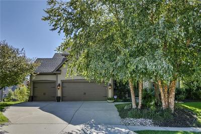 Kansas City Single Family Home For Sale: 9605 NE 96th Terrace