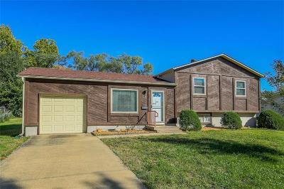 Overland Park Single Family Home For Sale: 10001 Benson Street