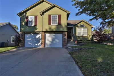 Grain Valley Single Family Home For Sale: 854 SW Lee Ann Drive
