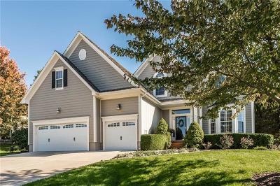 Lenexa Single Family Home For Sale: 20817 W 92 Street