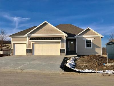 Grain Valley Single Family Home For Sale: 514 NW Bailey Drive