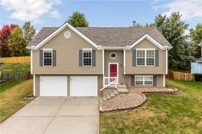 Liberty Single Family Home For Sale: 520 Melissa Street