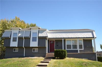 Grandview Single Family Home For Sale: 6201 E 140th Terrace
