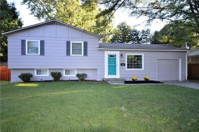 Overland Park Single Family Home For Sale: 9205 W 99th Terrace