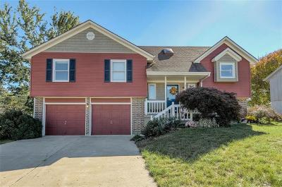 Lee's Summit Single Family Home For Sale: 1707 SE Boone Trail