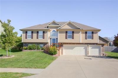 Lee's Summit MO Single Family Home For Sale: $279,995