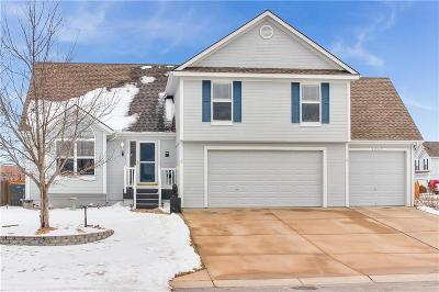 Lee's Summit Single Family Home For Sale: 2417 SW Woodhaven Lane