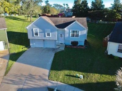 Kansas City Single Family Home For Sale: 6515 NE 45th Street