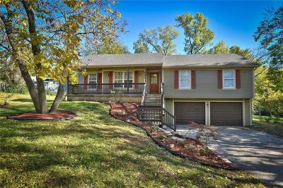 Single Family Home For Sale: 6625 W 53rd Street