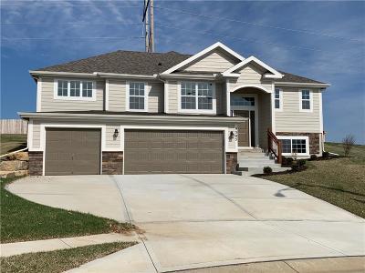 Kansas City Single Family Home For Sale: 9305 N Highland Court