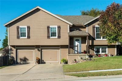 Raymore MO Single Family Home Show For Backups: $189,500