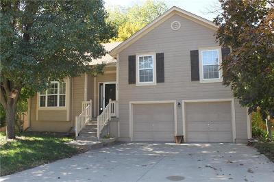 Blue Springs Single Family Home For Sale: 305 NW 26th Street