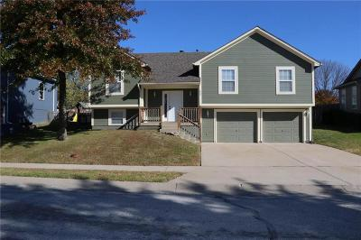 Grain Valley Single Family Home For Sale: 825 SW Lee Ann Drive