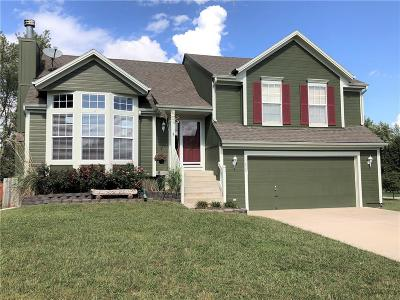 Spring Hill Single Family Home For Sale: 20839 S Skyview Lane