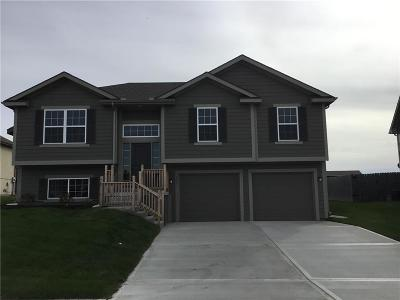 Grain Valley Single Family Home For Sale: 507 Hickory Ridge Drive