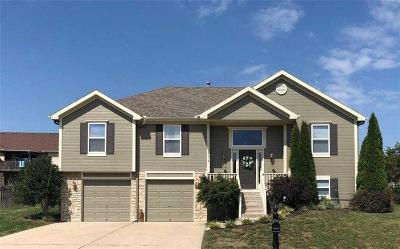Single Family Home Sold: 1014 Kathleen Way