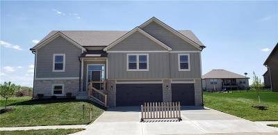 Lone Jack Single Family Home For Sale: 815 W Jack Street