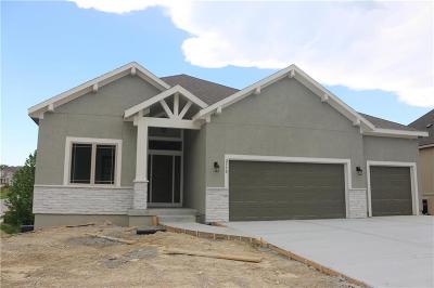 Olathe Single Family Home For Sale: 2770 W Wabash Street