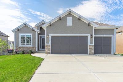 Olathe Single Family Home For Sale: 20841 W 115th Terrace