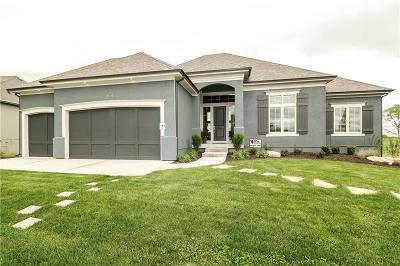 Kansas City Single Family Home For Sale: 10523 N Dalton Avenue
