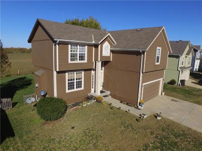 Kansas City Single Family Home For Sale: 13106 New Jersey Avenue