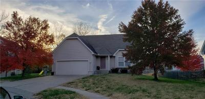Independence Single Family Home For Sale: 1316 S Osage Village Court