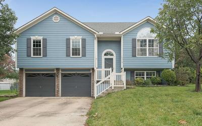 Belton Single Family Home For Sale: 16312 Harris Avenue