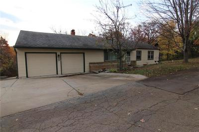 Shawnee Single Family Home For Sale: 4847 Black Swan Drive