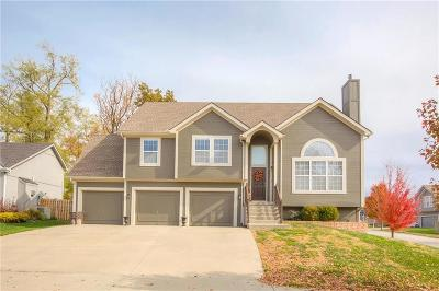 Platte County Single Family Home For Sale: 8803 N Chatham Avenue