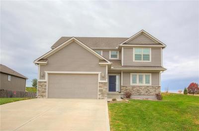 Smithville Single Family Home For Sale: 18408 Rock Ridge North